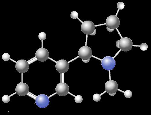 nicotine chem structure